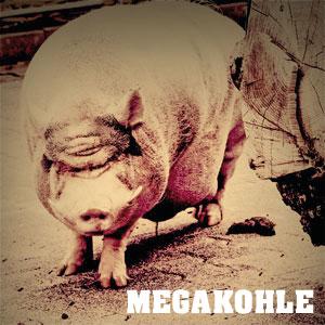 bullenschwein